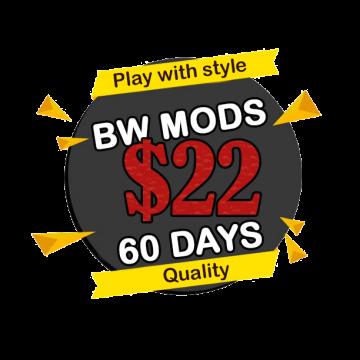 22-bw-mods